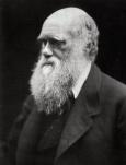 Charles_Darwin 1 0